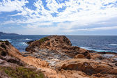 Point Lobos State Natural Reserve — Stock Photo