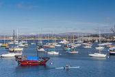 Monterey Harbor and Marina — Stock Photo