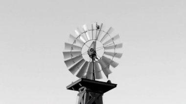 Molino de viento da vuelta en blanco y negro — Vídeo de stock