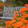 Stock Photo: Outdoor Bench