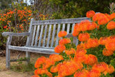 Outdoor Bench — Stock Photo