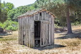 Dilapidated Outhouse — Foto Stock