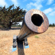 Looking Down Barrel of Old Cannon — Stock Photo