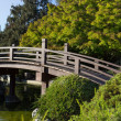 Stock Photo: Bridge at Japanese Garden