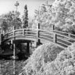 Japanese Footbridge Over Pond in Black and White — Stock Photo
