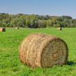 Stock Photo: Prominent Single Haystack