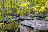 Glacial Rock Formation at Banning State Park — Stock Photo