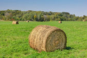 Prominent Single Haystack — Stock Photo