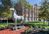 University of Southern California Traveler Horse Statue — Stock Photo