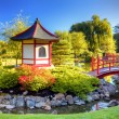 Pagoda and Bridge — Stockfoto