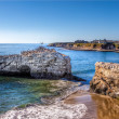 Pelicans on Natural Bridges — Stockfoto