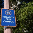 Tobacco Free Campus Sign — Foto Stock