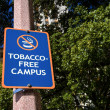 Tobacco Free Campus Sign — Stock Photo