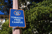 Tobacco Free Campus Sign — Stock fotografie