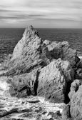 Seascape of Point Lobos in Black and White — Stock Photo