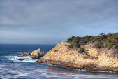 Cyprus Cove at Point Lobos Park — Stock Photo
