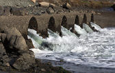 Raging Floodwater Drains Trhough Culvert Pipes — Stock Photo