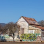Abandoned American Farmhouse — Stock Photo #38667295