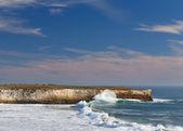 Waves Crashing Ashore at Wilder State Beach — Stock Photo