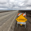 Stock Photo: Flooded Roadway Sign