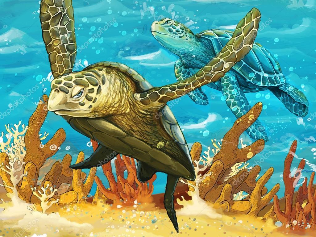 L 39 illustrazione della coppia sub grandi tartarughe for Tartarughe grandi