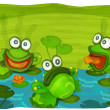 The frogs — Stock Photo