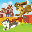 The farm - cat - dog fun chase - Stock Photo