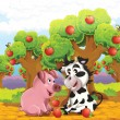 The cartoon pig and cow playing in the orchard and eating apples — Stock Photo