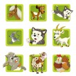 Farm. Set of 9 glossy square web icons. — Stock Photo