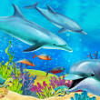 The coral reef — Stock Photo