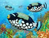 The coral reef - illustration for the children — Stock Photo