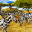 Zebras illustration on nature - Stock Photo