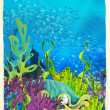 Coral reef — Stock Photo #26507839