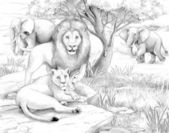 Safari - lions and elephants - coloring page- illustration for the children — Stock Photo