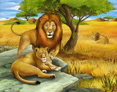 Safari - lions - illustration for the children — Stock Photo