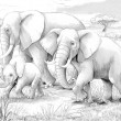 Safari - elephants - coloring page- illustration for the children — Stock Photo