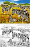 Safari - zebras and elephants - coloring page - illustration for the children — Stock Photo