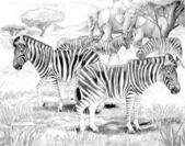 Safari - Zebras and elephants - coloring page- illustration for the children — Stock Photo