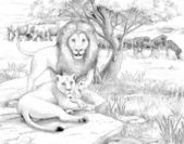 The safari - coloring page - illustration for the children — Stock Photo
