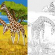 Safari - giraffes - coloring page - illustration for the children — Stock Photo