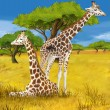 Safari - giraffes - illustration for the children — Stock Photo