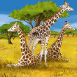Stock Photo: Safari - giraffes - illustration for children
