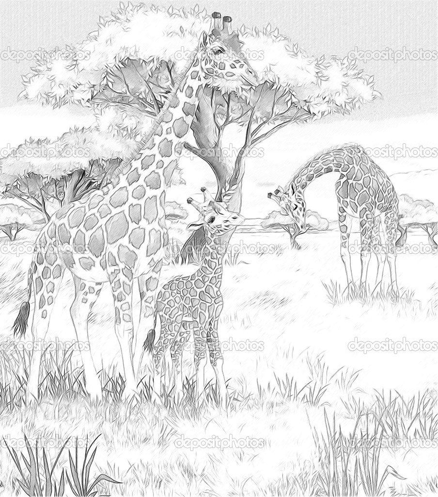 african savannah tree coloring pages - photo#12