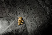 Teddy bear on the stairway — Stock Photo