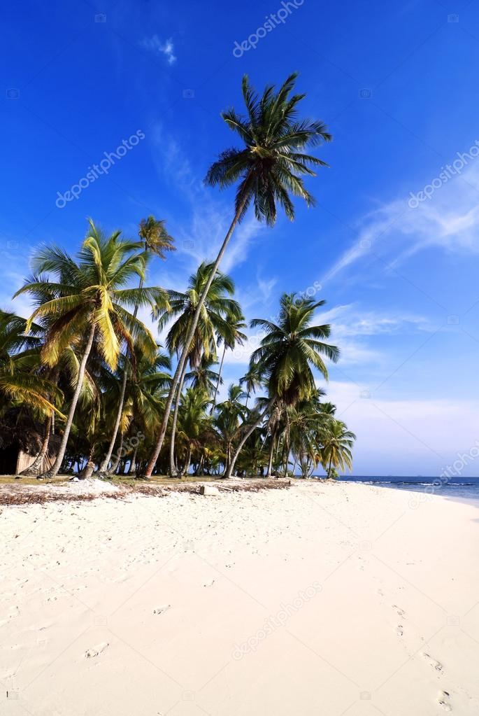 Tropical Beach, San Blas Archipelago, Panama  — Stock Photo #13442869