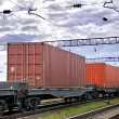 The train transports containers — Stock Photo