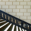 Foto Stock: Pedestriladder with shod handrail