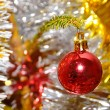 Red xmas ball hanging on pine twig — Stock Photo
