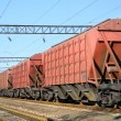 Stock Photo: The train with cars for dry cargo