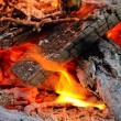Wood burning in the fire — Stock Photo